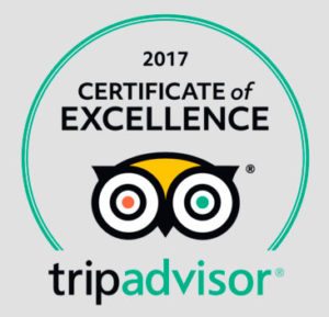TripAdvisor Certificate of Excellence 2017 - VipBarcelonaTourGuides 2
